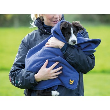 Digby & Fox Dog Towel