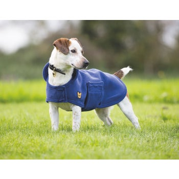 Digby & Fox Dog Towel Coat