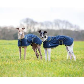 Digby & Fox Softshell Greyhound Coat